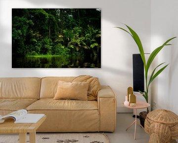 Tortuguero jungle van Costa Rica. van Corrine Ponsen
