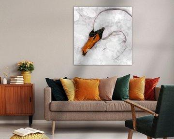 Weißer Schwan von Bianca Wisseloo