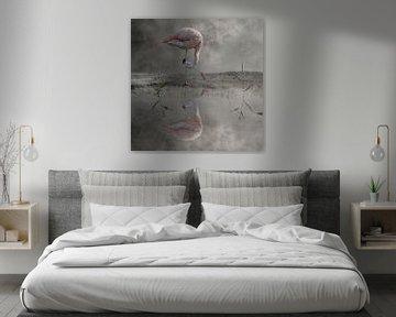 Flamingo von Cora Deutekom