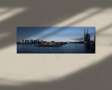 Uitzicht over Noordereiland Rotterdam van Laurens van Eijndthoven