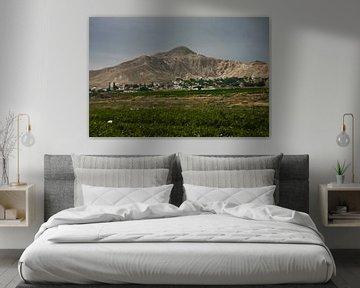 Eine grüne Wiese und ein Berg in der Nähe von Jericho. von Michael Semenov