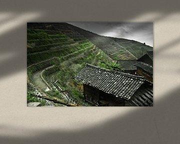 Traditionele boerderij. Mistig herfstlandschap met rijstterrassen. China, Yangshuo, Longsheng Rijstt van Michael Semenov