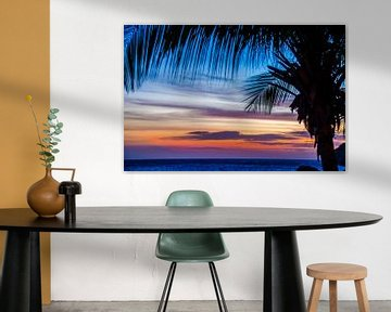 Palmboom bij kleurrijke zonsondergang van Joke Van Eeghem