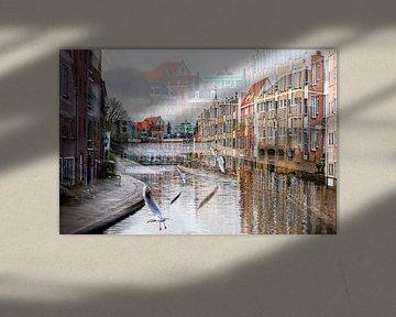 Schiedam / Korte haven van Ellen Driesse