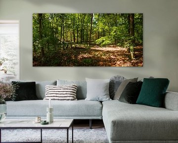 In het bos van Frank Herrmann