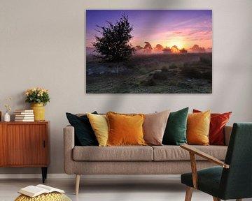 Kleurrijke zonsopkomst in Natuurgebied De Pan van Ruud Engels