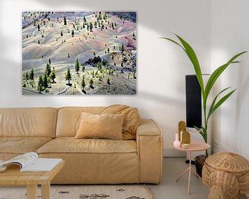 Painted dunes van Xaverius Van den berg