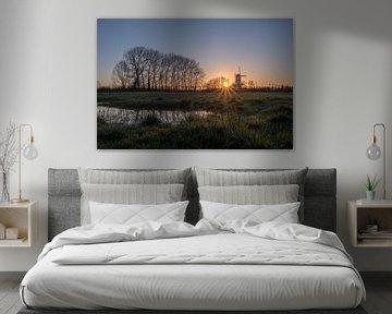 Broyez le papillon le matin sur Moetwil en van Dijk - Fotografie