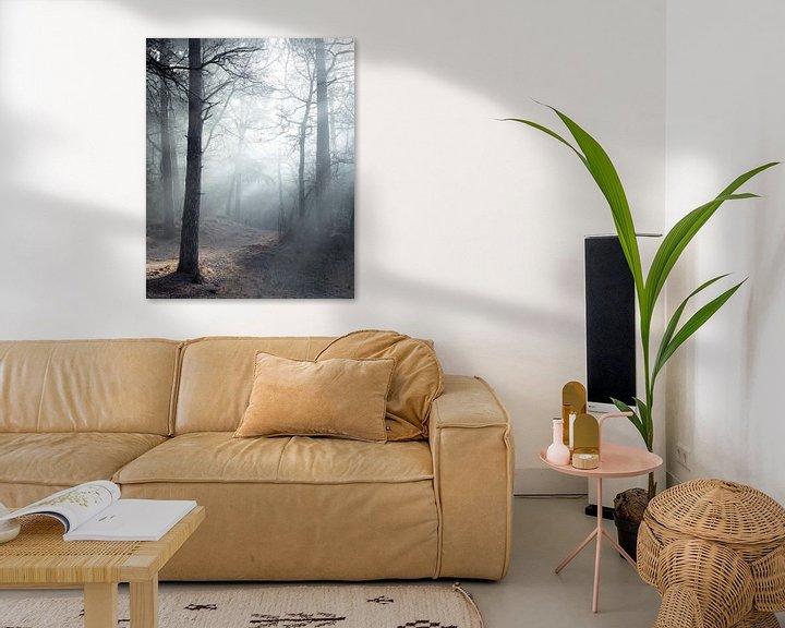 Sfeerimpressie: Mysterieus bos van Peter Nolten