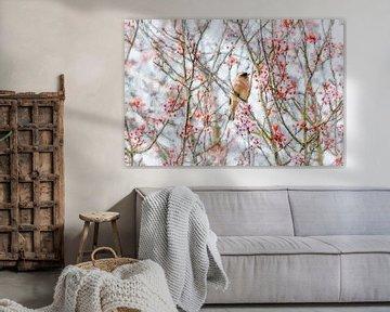 Rosa Blüte und ein männlicher Fink (Gemälde) von Art by Jeronimo