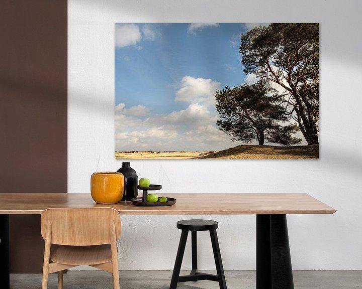 Beispiel: Niederländische Landschaft von Anjo ten Kate
