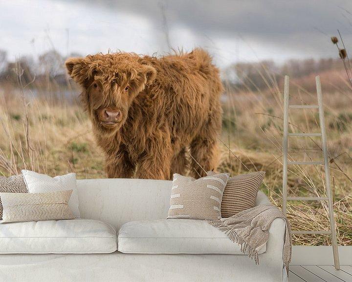 Sfeerimpressie behang: Wilde Schotse Hooglander in Vlaardingen van Charlene van Koesveld