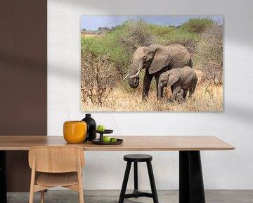 Elefantenmutter und Kalb in Tansania von Mickéle Godderis