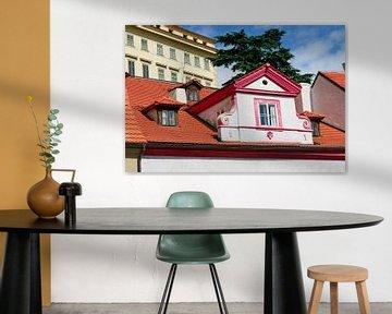 Prag - Gaube mit Babygaube von Wout van den Berg