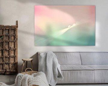 Druppel in lentekleuren van Jessica Berendsen