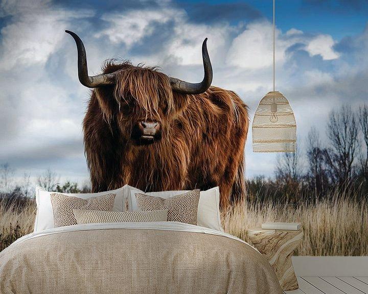 Sfeerimpressie behang: Schotse hooglander - Stier - Bull - Hoorns - Vacht - Koe - Drenthe - Friesland - Schotland - Heide van Designer