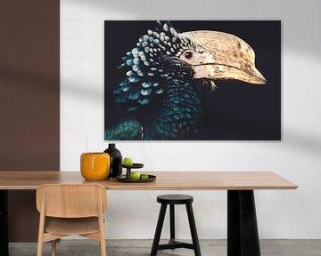 Nashornvogel von Hendrik Jonkman
