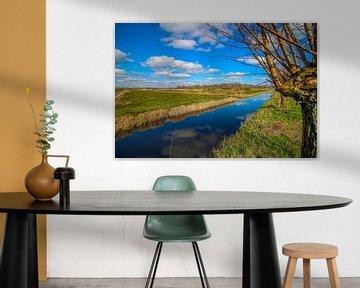 Paysage d'un saule têtard près d'un fossé à Giethoorn. sur Maarten Salverda