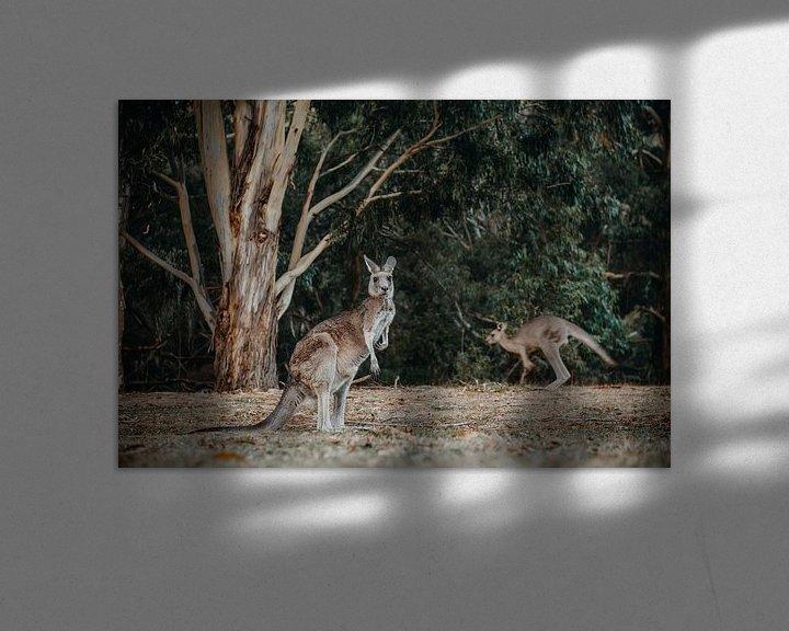 Beispiel: Känguru 3 von Marscha van Druuten