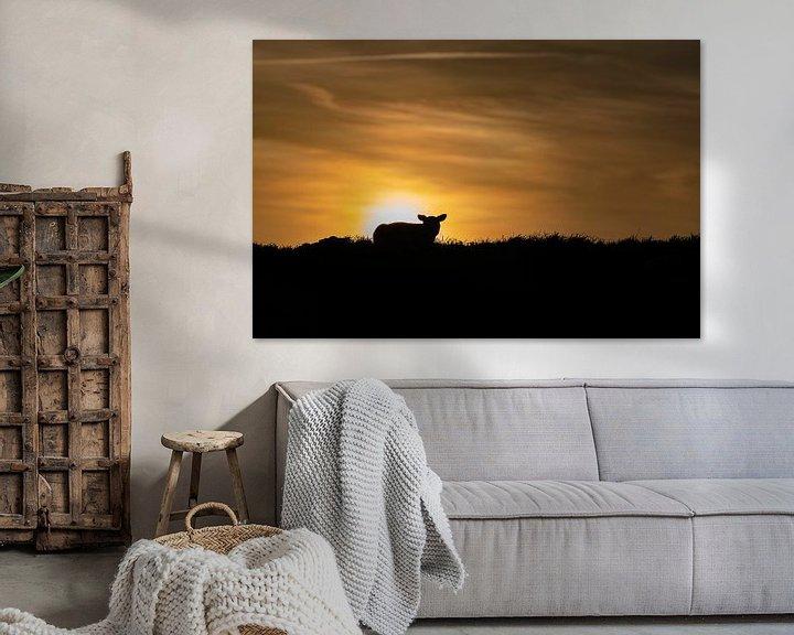 Sfeerimpressie: Lammetje Texel zonsondergang van Texel360Fotografie Richard Heerschap