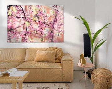 Fleurs en fleurs sur Louise van Gend