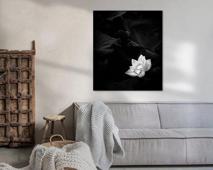 Beispiel: Abbildung der weißen Lotusblume von Jacky Gerritsen