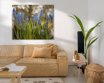 Ein Frühlingsblumenstrauß für Sie von J..M de Jong-Jansen