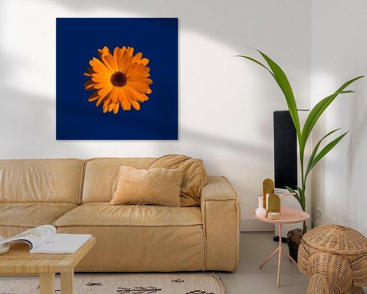 Sfeerimpressie: Orange Power Flower van > VrijFormaat <