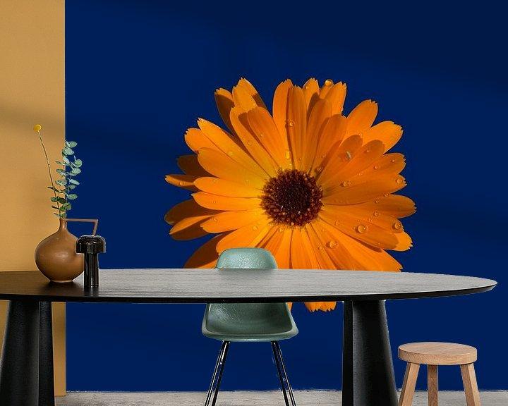 Sfeerimpressie behang: Orange Power Flower van > VrijFormaat <