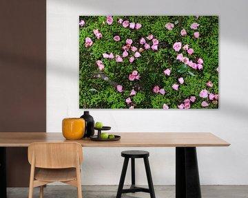 Blumen im Moos von Mickéle Godderis