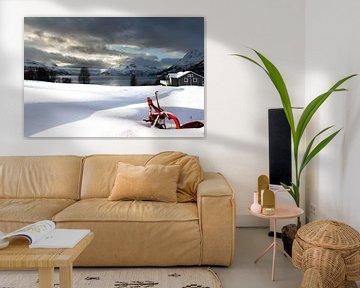 Winter van Hans Vellekoop