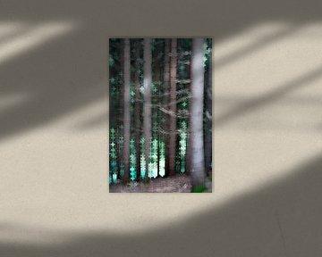 Turquoise bos van Joske Kempink