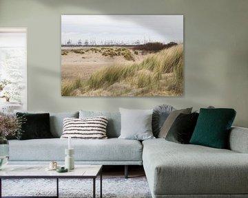 Uitzicht op de 2e Maasvlakte vanaf strand Oostvoorne van André Hamerpagt