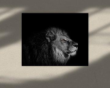 The eye of the Lion - Leeuwenkop in zwart-wit met heldere gele ogen