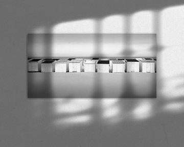 Collective Freedom von Niels Devisscher