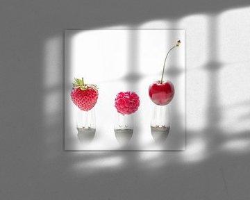 3 Früchte, 3 Gabeln von Tanja Riedel
