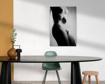 Weiblicher Körper - Nackte Frau, in Nahaufnahme fotografiert.  #0152 von william langeveld