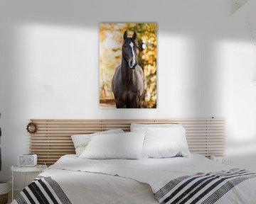 Bruin paard in de herfst van Lotte van Alderen