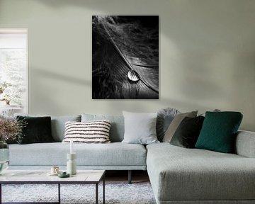 Waterdrop van Thomas Jansen
