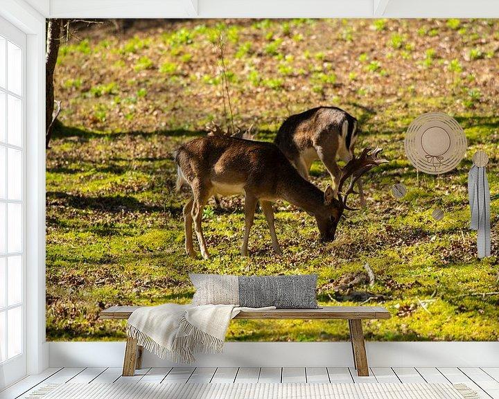 Sfeerimpressie behang: Grazende Herten in de Zon van Brian Morgan