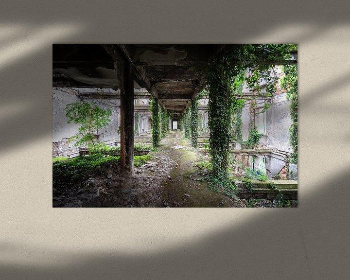 Beispiel: Verlassener gewachsener Korridor. von Roman Robroek