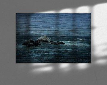 ROTSEN IN WOELIG WATER van Kelly Durieu