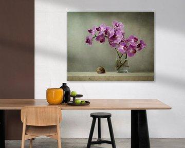 Pittoreske Orchidee von Joske Kempink
