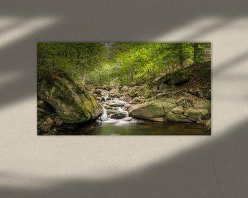 Ruisseau romantique dans le parc national du Harz