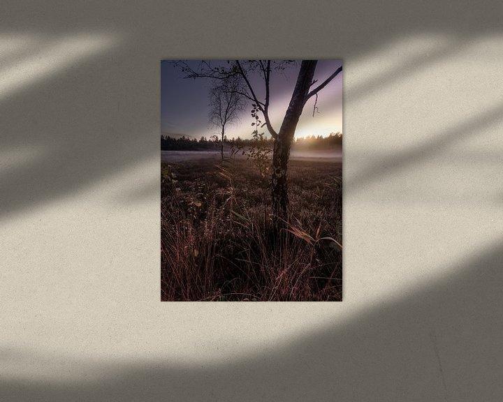 Beispiel: Herbst im Schönramer Filz von Thomas Weber