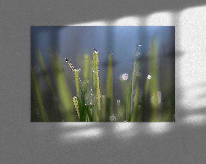 Sfeerimpressie: druppels in het groen van Tania Perneel