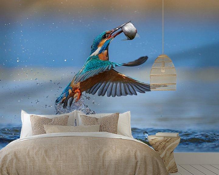 Beispiel fototapete: Eisvogel - Im Handumdrehen von IJsvogels.nl - Corné van Oosterhout