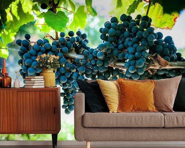 Sfeerimpressie behang: Wijngaard van Stefan Witte