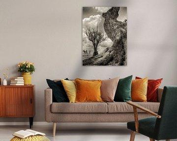 Dode boom in Botswana van Ed Dorrestein