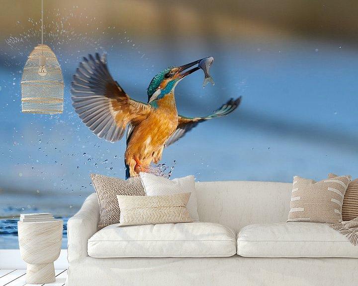 Impression: Martin-pêcheur - En un clin d'œil sur IJsvogels.nl - Corné van Oosterhout